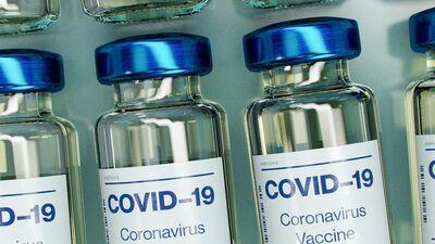 Rinkēvičs: Var būt situācija, ka vakcinētie ar ES nereģistrētām vakcīnām nebaudīs ceļošanas brīvību
