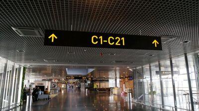 Viņķele par repatriācijas reisiem: Tiek pārbaudīti tikai tie atbraucēji, kam ir simptomi