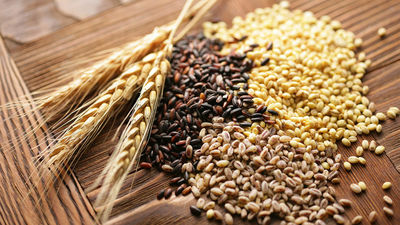 Kuri ir veselīgākie Latvijas graudaugi?
