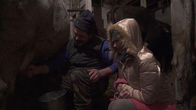 Vai dziedātāja Linita prot slaukt govi?