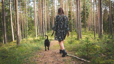 Kam jāpievērš uzmanība dabas takās pastaigājoties ar suni?